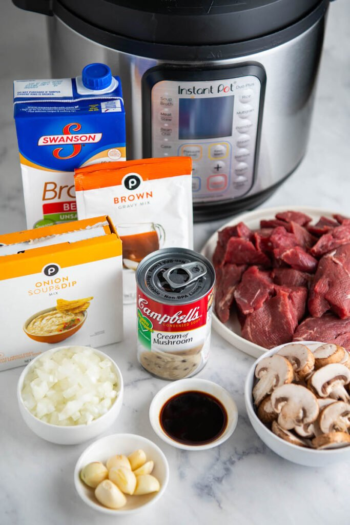 Ingredients arranged in front of an instant pot.