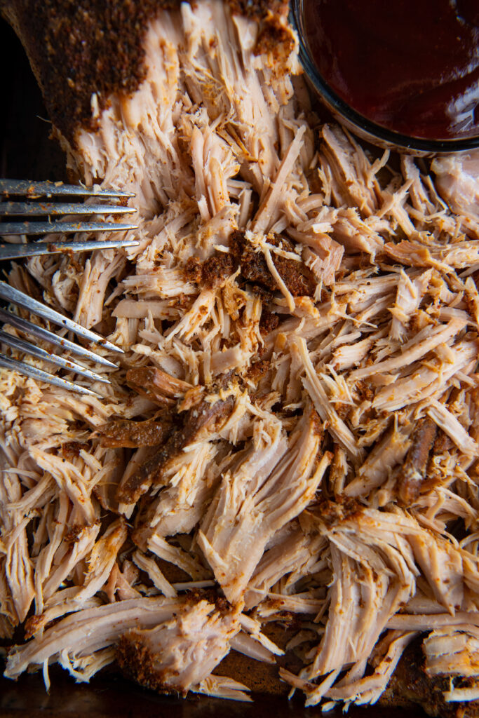 Pulled pork shredded on a baking sheet with two forks.